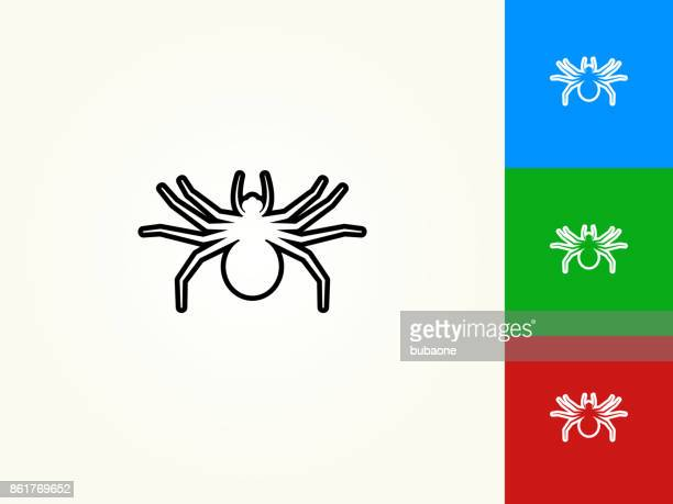 Big Spider Black Stroke Linear Icon