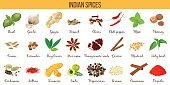 Big vector set of popular indian spices. Ginger, Cloves, Nutmeg, Cumin, Star anise, Holy basil, Cardamom, Saffron, Turmeric, Amla, Cinnamon, etc For cosmetics store spa icon price tag label