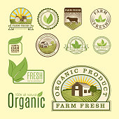 Bio farm organic eco healthy food label logo templates and vintage vegan element in green color for restaurant menu or package badge vector illustration. Vegetarian natural farm sign.