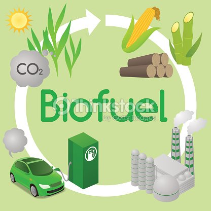 Biofuel Life Cycle Biomass Ethanol Diagram Illustration Vector Art