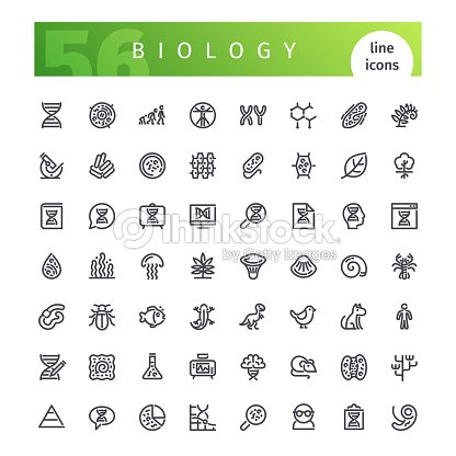 Biology Line Icons Set : stock vector