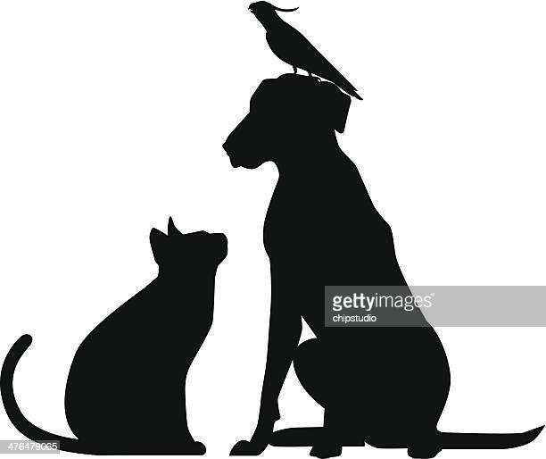 Bird Cat Dog