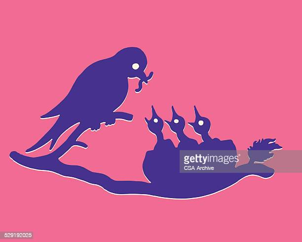 Bird Feeding Three Chicks in a Nest
