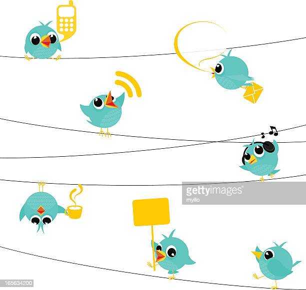 Bird, tweet, bluebird, feed, social media, text, follow, cartoon, minimil