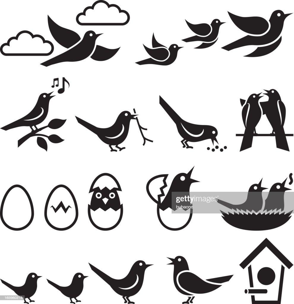 birds black and white royalty free vector icon set vector art