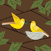 Cute birds couple poster. Comic flat cartoon. Minimalism simplicity design. Male bird is feeding by worm female sitting on eggs in straw nest on tree branch. Template vector birdwatching background