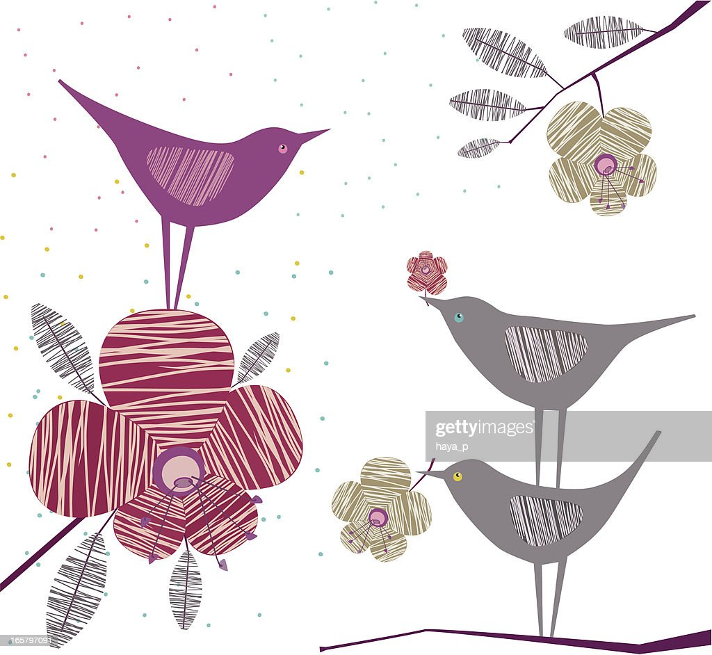 dating birds Start studying earth science review learn vocabulary dating a rock or mineral by measuring the proportions of an birds separated from dinosaur.