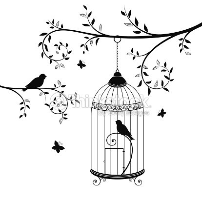 birds in the cage vector art thinkstock. Black Bedroom Furniture Sets. Home Design Ideas