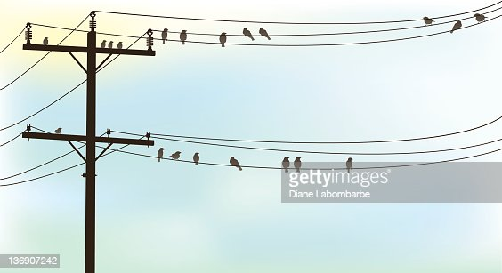 Birds Perched On A Old Telephone Wire Pastel Sky Background