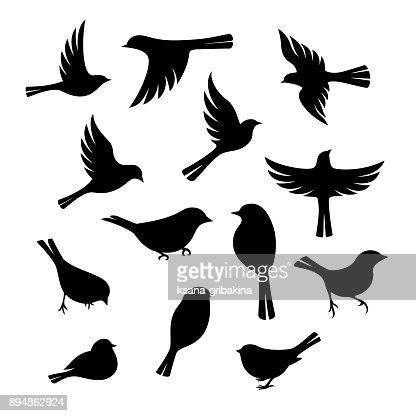 Birds silhouette collection. : stock vector