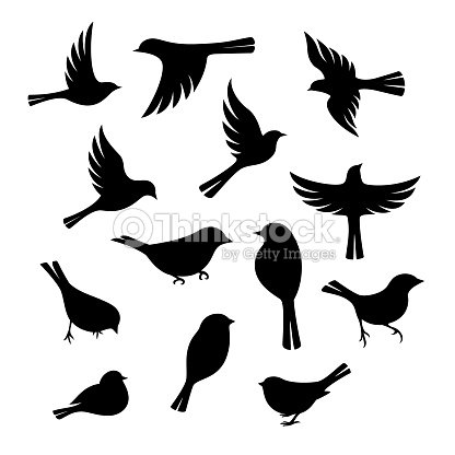 Birds silhouette collection. : arte vetorial
