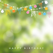 Birthday garden party or Brazilian june party, vector illustration with garland of lights, party flags and blurred background
