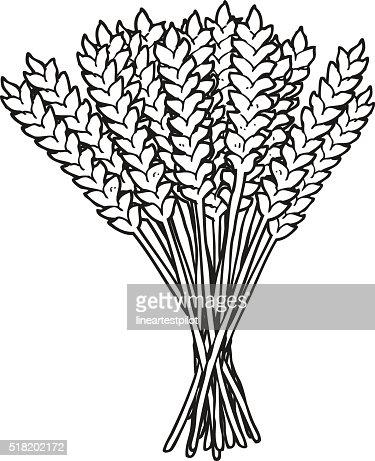 black and white cartoon wheat vector art thinkstock