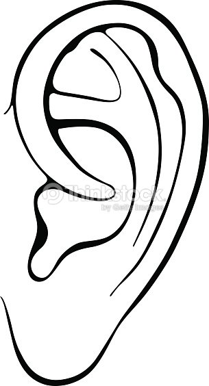 Human ears clipart black and white - photo#35