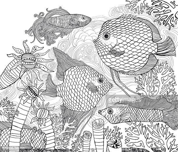 Black and white fish and corals coloring page