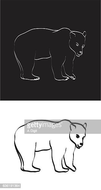 Black and White Grizzly Bear