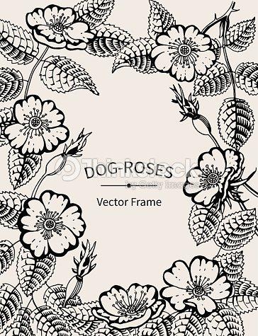 Black And White Vintage Vector Frame Dog Roses