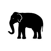 Black elephant silhouette. Vector shadow. Laser cutting path