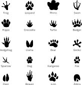 Black footprints shapes of animals. Elephant, leopard, reptile and tiger. Different steps animals frog and rhino, swan and hippo, crocodile and turtle illustration