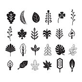 Black silhouette and line summer and tropical leaves icons set on white background
