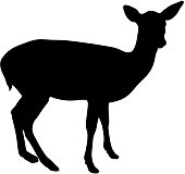 black silhouette of fawn on white background of vector illustration