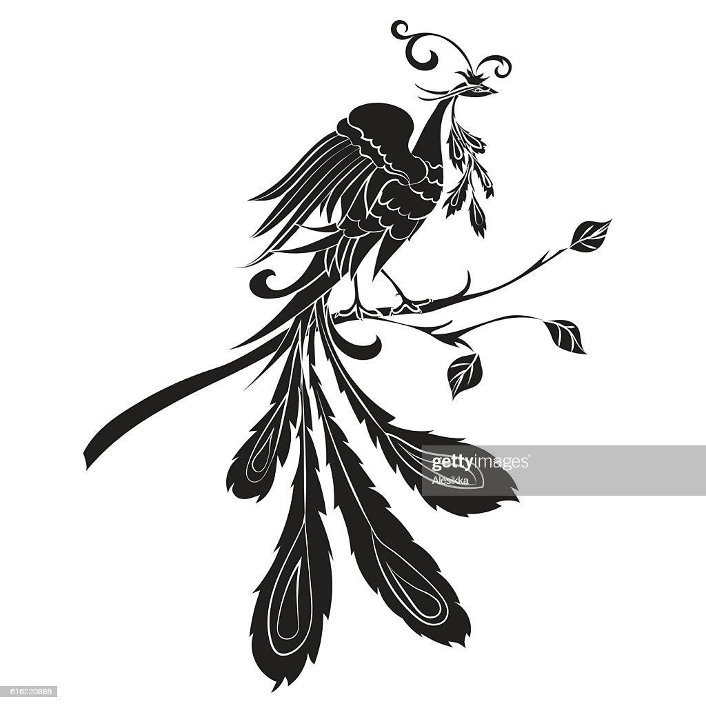 Black silhouette of fire-bird . : ベクトルアート
