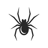 Spider Icon on White background. Vector illustration