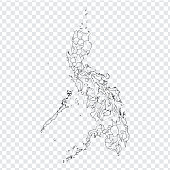 Blank map Philippines. High quality map of  Philippines with provinces on transparent background for your web site design, logo, app, UI. Stock vector. Vector illustration EPS10.