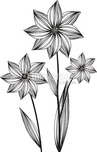 Blossom Flower Line Drawing : Blossom flower line drawing vector art thinkstock