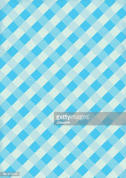 Blue and white Checked table cloth background with texture