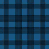 Blue tartan striped colourful textile seamless pattern