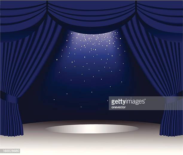 Blue Velvet Curtain
