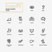 Set of modern vector body parts plain simple thin line design icons and pictograms. Body, internal parts of body, brain, bladder, liver, stomach, kidneys, locomotor system, intestinal tract, pancreas
