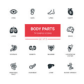 Body parts - set of modern vector line design icons, pictograms. Eyes, ears, limbs, heart, blood-vessels, lungs, brain, bladder, liver, stomach, kidneys, locomotor system, intestinal tract, pancreas