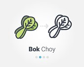 Bok choy vector icon