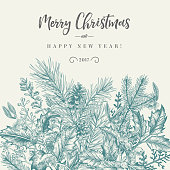 Winter background. Vector border with spruce branches, berries, holly, mistletoe. Greeting Christmas card in vintage style.