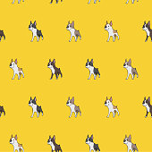 Pattern of yellow background. Boston Terrier with black, light brown and brown.