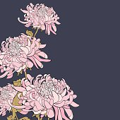 Bouquet of chrysanthemum on grey background. Floral element for design, place for text. Can by use for wedding invitations and greeting cards.