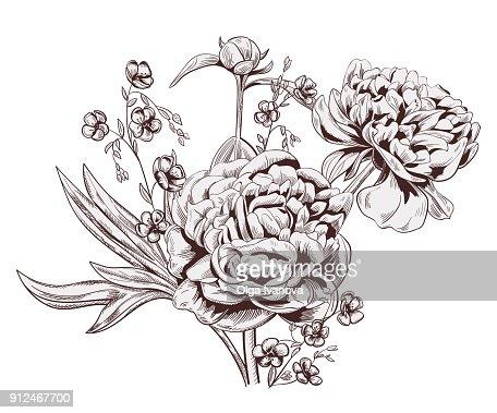 pfingstrose zeichnen blumen zeichnung, bouquet aus pfingstrose flachs einfarbige blumen braun knospe stammt, Design ideen