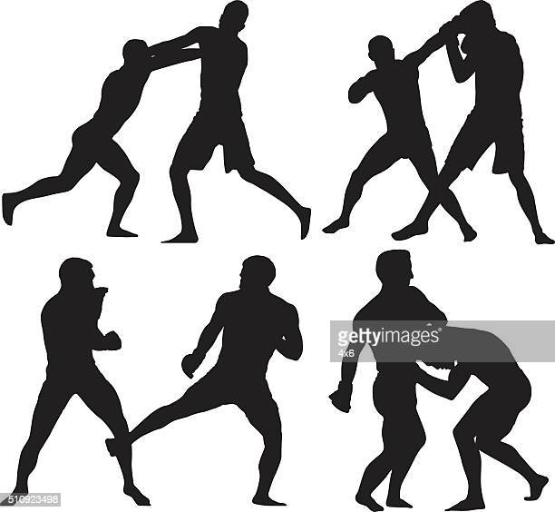 Boxer boxing