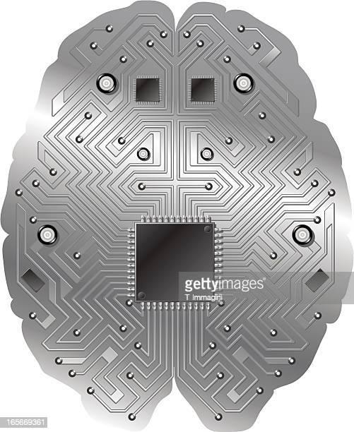Brain circuit, CPU