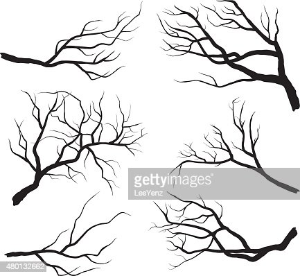 Branch Silhouettes : Vector Art
