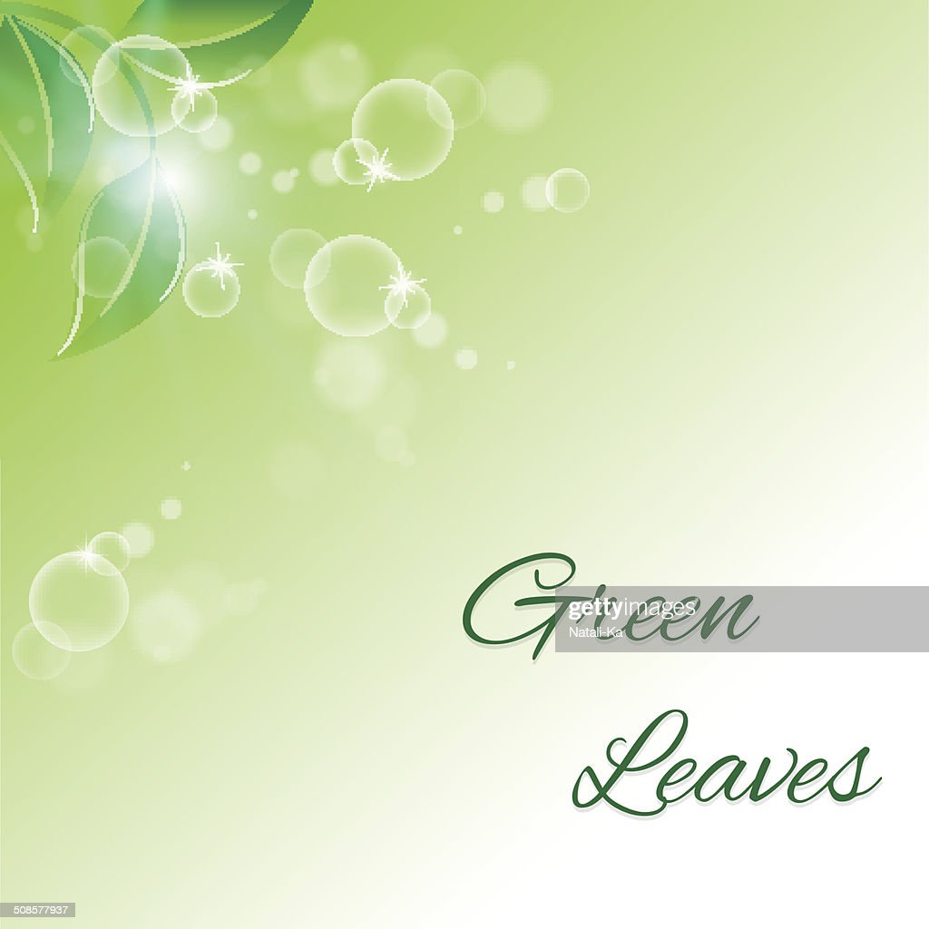 branch with fresh green leaves : Vector Art