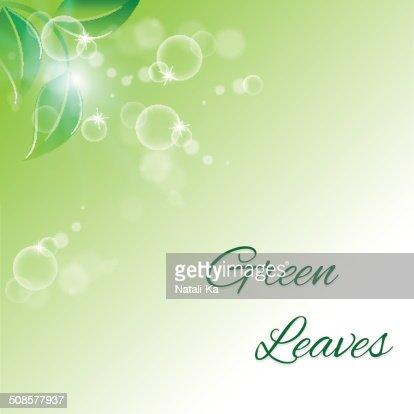 Ramo con foglie verdi fresche : Arte vettoriale