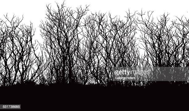 Branches Vector Silhouette
