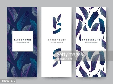 Branding Packageing leaf nature background, logo banner voucher, spring summer tropical, vector illustration : Vector Art