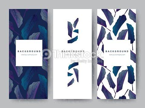 Marca Packageing hoja naturaleza fondo, vale de banner logo, primavera verano tropical, vector ilustración : arte vectorial