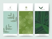 Branding Packageing Flower nature background, logo banner voucher, spring summer tropical, vector illustration