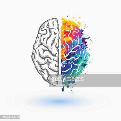 Habitación bien iluminada de izquierda y derecha hemisferio del cerebro humano : Arte vectorial