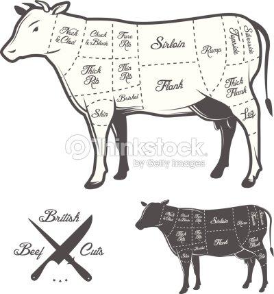 British Butcher Cuts Of Beef Diagram Vector Art Thinkstock